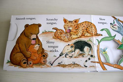 Animales texturas