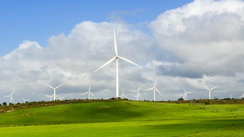 Moulins à vent de Western Cape, Afrique du Sud