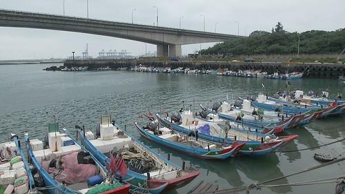 工程進行造成漁獲減少