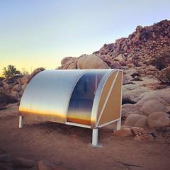 Dawn in the desert #WagonStationEncampment