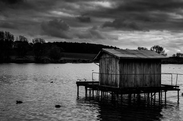 nfb photo - blanc et noir dans l'est de France