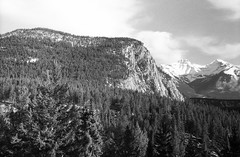 The View from the Banff Springs Hotel