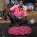 the flower seller by Minnsha