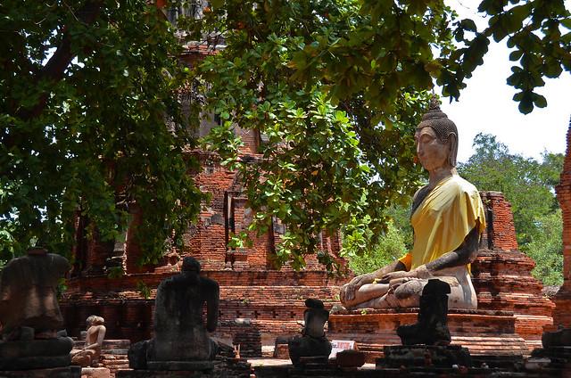 Buddas de Ayutthaya en Tailandia