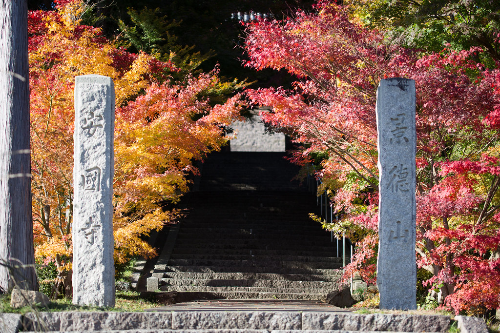 山門の彩り
