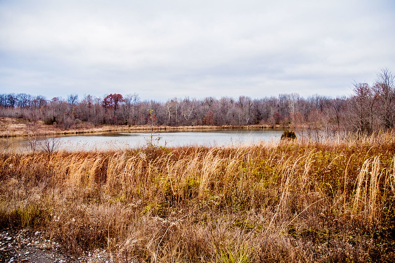 Columbia Mine Preserve - November 25, 2014