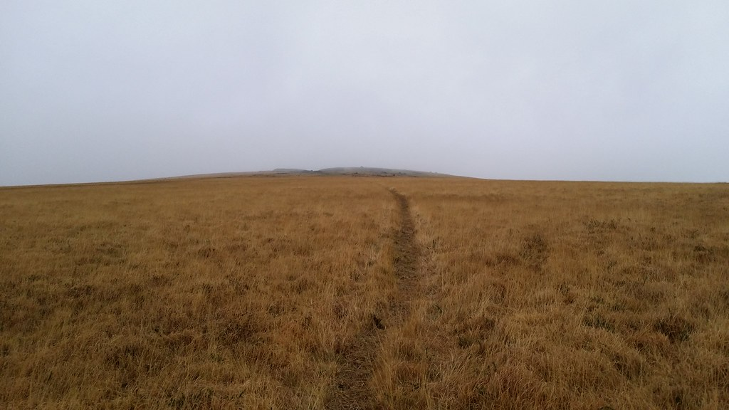 Something other than bog appears ahead #dartmoor #sh