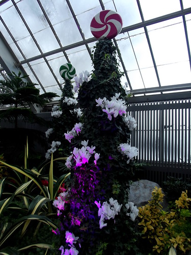 Montreal Botanical Garden - Christmas 2014