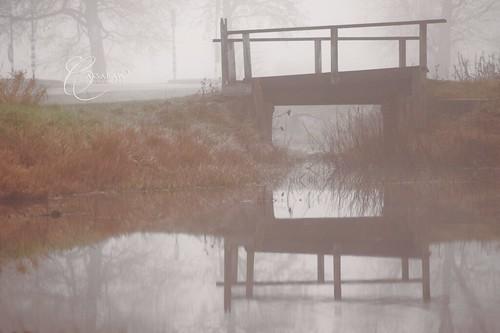 autumn water misty fog finland landscape geotagged mirror still 33 sony calm reflective alpha jämsä a dslt slta33