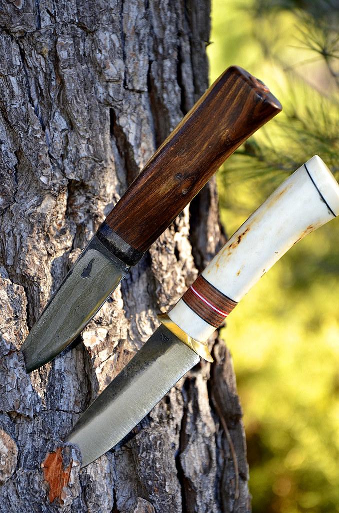 Des traces de couteaux dans les bois 16077568538_cc1234f06d_b