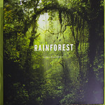 "Lewis Blackwell's ""Rainforest"" (October, 2014)"