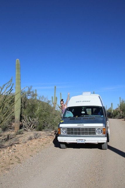 Saguaro National Park, Arizona.