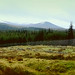Small photo of Druim an Aird | Scotland