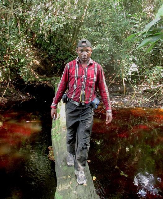 Junior crossing stream