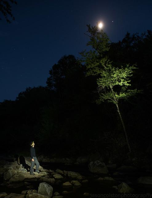 Man, Tree, Moon, Jupiter