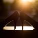 high heeled sunrise - 203/366 by auntneecey