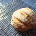More homemade bread: rye + whole wheat by todbot