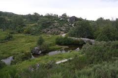 Ponte da Panchorra, Resende