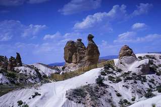 Camel in Cappadocia??