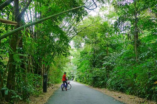 Singapore | Pulau Ubin