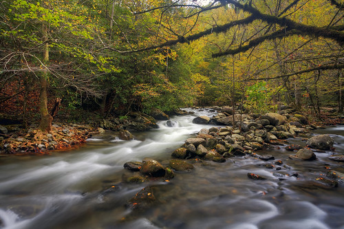 park autumn mountains fall water river landscape gold october stream little great institute national smoky middle tremont prong gsmnp tonybarber