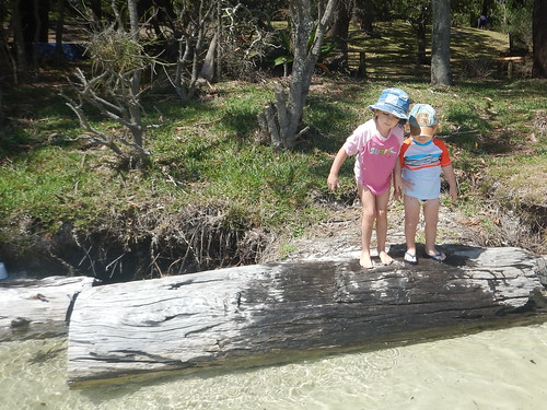 Siblings on a log. Greenpatch.