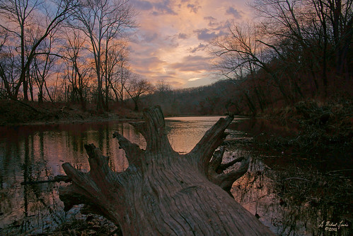 trees sunset sky reflection nature water clouds forest river landscape outdoors log scenery stream roots missouri ozarks