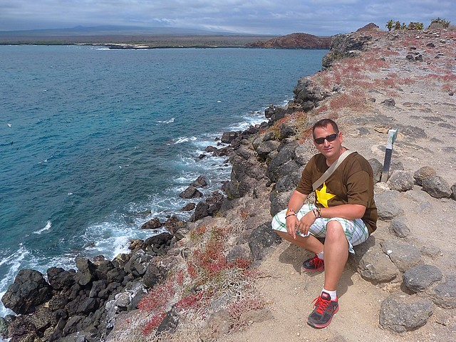 Sele en isla Plaza Sur (Galápagos)