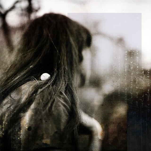 Tunguska RdM - Alice wandering.
