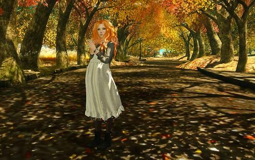 autumn thoroughfare - lotd 15/11/2014