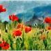 Poppy by Vestaligo in deep mourning