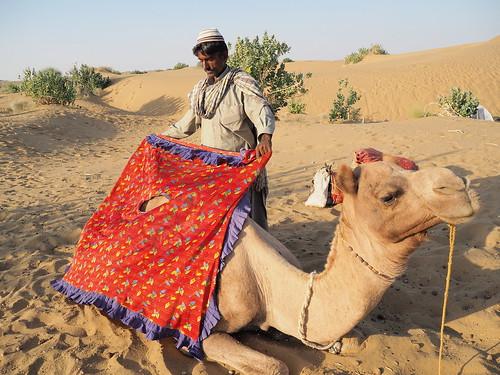 india camel indien jaisalmer rajasthan inde インド camelsafari cameldriver 駱駝 印度 cameltrain ラクダ thardesert 沙漠日出 olympusomd olympus1442ez 砂漠の日の出