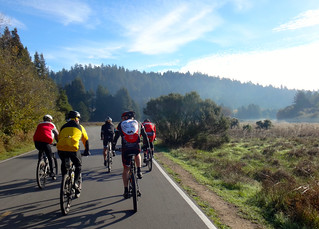 Turkey day ride starting in Henry Cowell