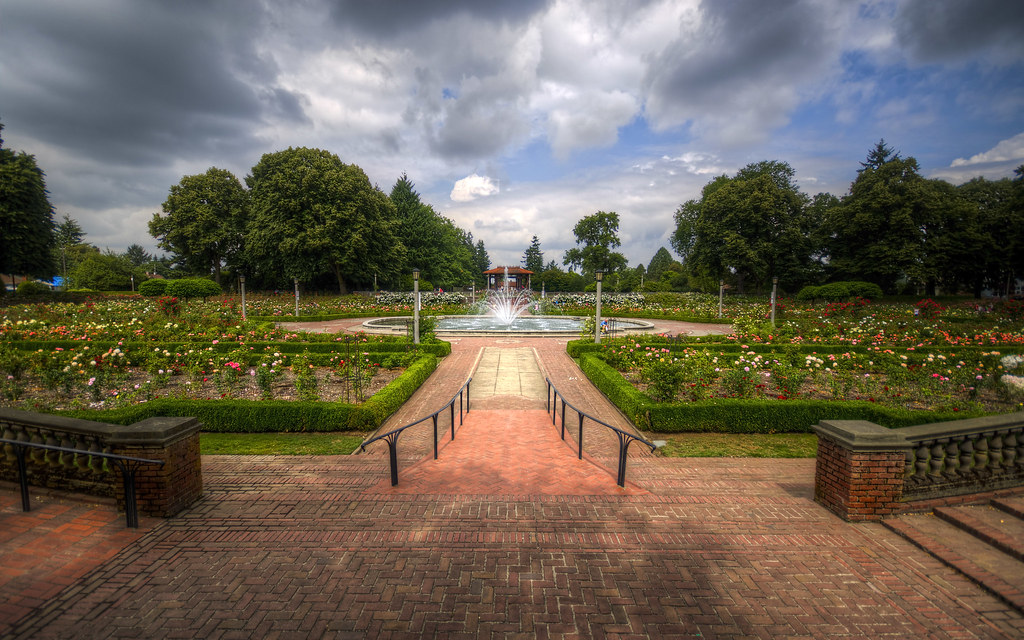 Rose Garden and Fountain in Portland