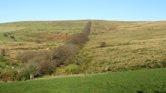 Tree line to Hameldown Beacon