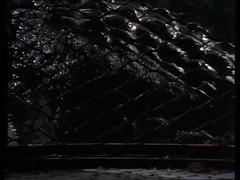 vlcsnap-2014-12-11-09h43m22s144