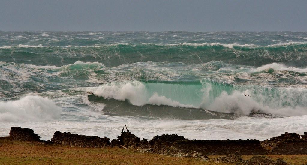 December Storm IMG_5747