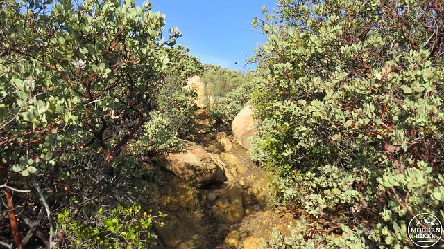 Corte Madera Mountain 12