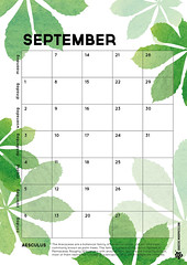 09_kalender 2015