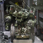 GBWC2014_World_representative_exhibitions-87
