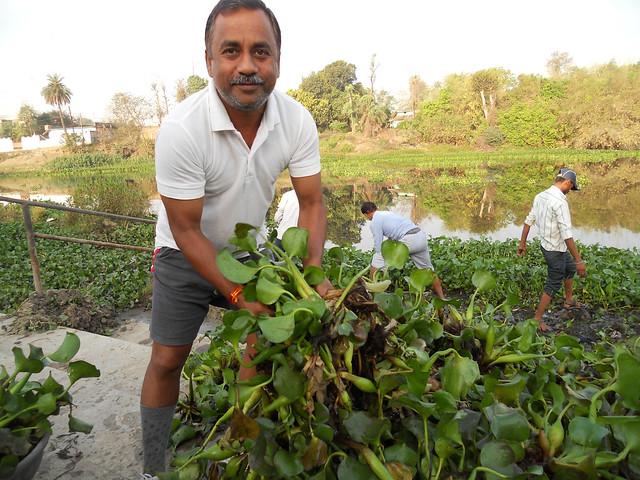 बिछिया नदी में फैली जलकुम्भी साफ करते जन अभियान परिषद के संयोजक अमिताभ श्रीवास्तव