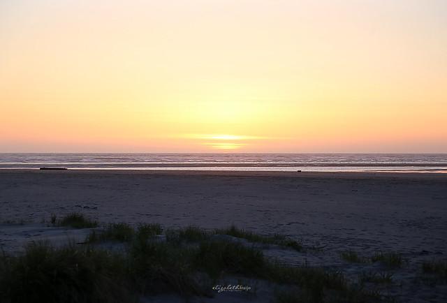 Beach29W