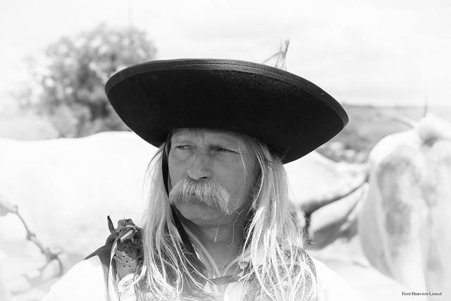 Hungarian herdsman