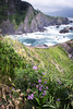 Biscay Coast 2