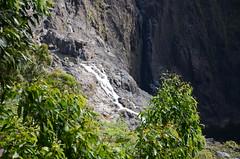 DSC_5794 Barron Falls, Kuranda, Queensland
