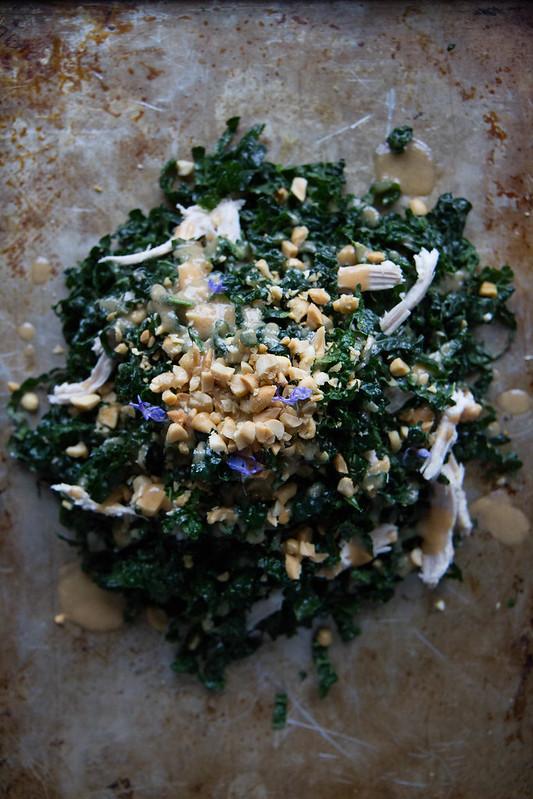 Kale and Chicken Salad with Peanut Vinaigrette