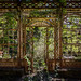 Steampunk Greenhouse (02) by Maestro-Photography
