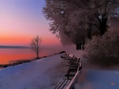 Frozen Misty Lake