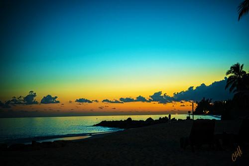 ocean trees sunset sky cliff beach hope sand nikon western d800 netcom cliffhope cliffhopeca