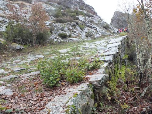 Vía Saliámica